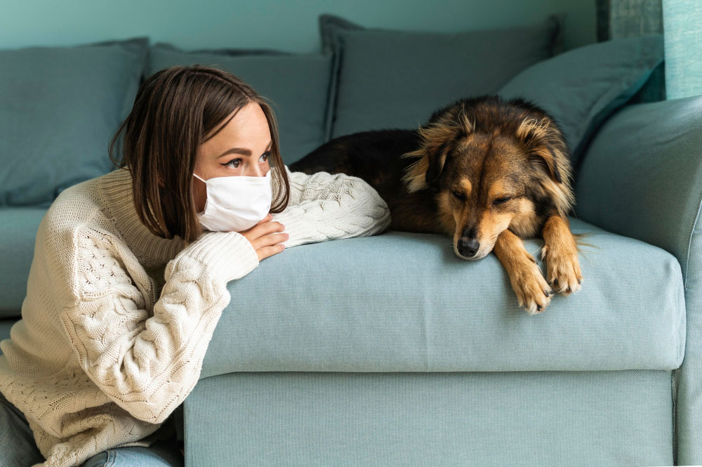 Has-The-COVID-19-Pandemic-Negatively-Impacted-Your-Oral-Health